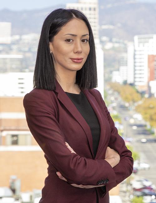 Kristina Vardanian - Personal Injury &Amp; Property Damage Lawyer